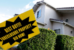 Find Land for Sale - Buying Tips for You to Keep in Mind
